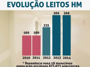evolucao leitos